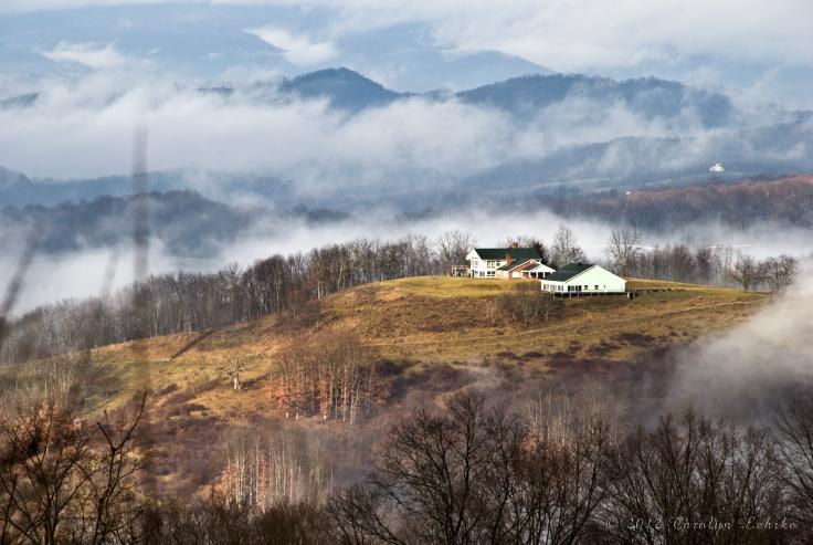 Morning Fog Rising, by Carolyn Lehrke (CC)